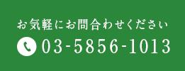 お気軽にお問合わせください 03-5856-1013